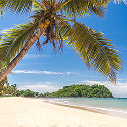 Madagascar, la grande île