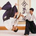 Les arts martiaux japonais